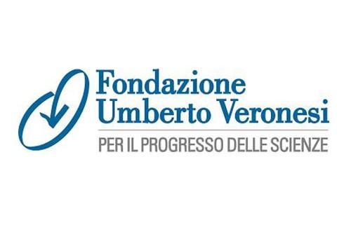 Logo-_0002_veronesilogo