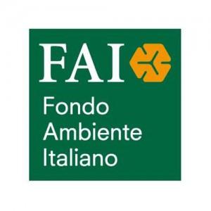 Logo-_0039_FAI