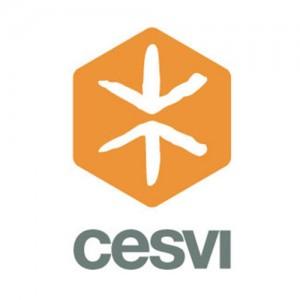 Logo-_0042_Cesvi